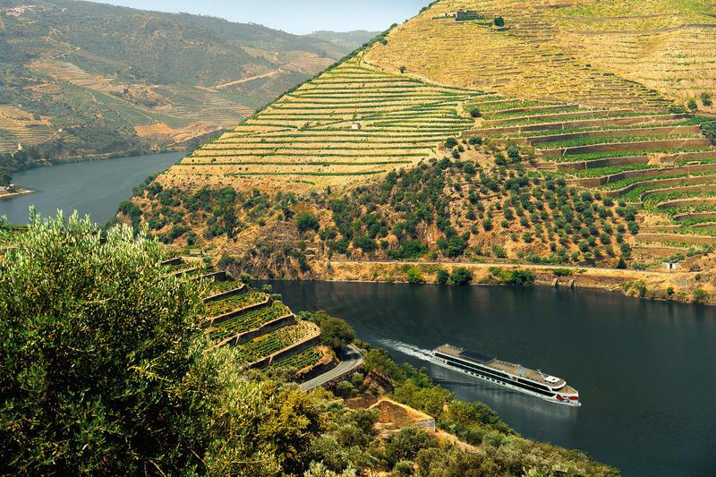 Douro, Weinberge | DOU22800