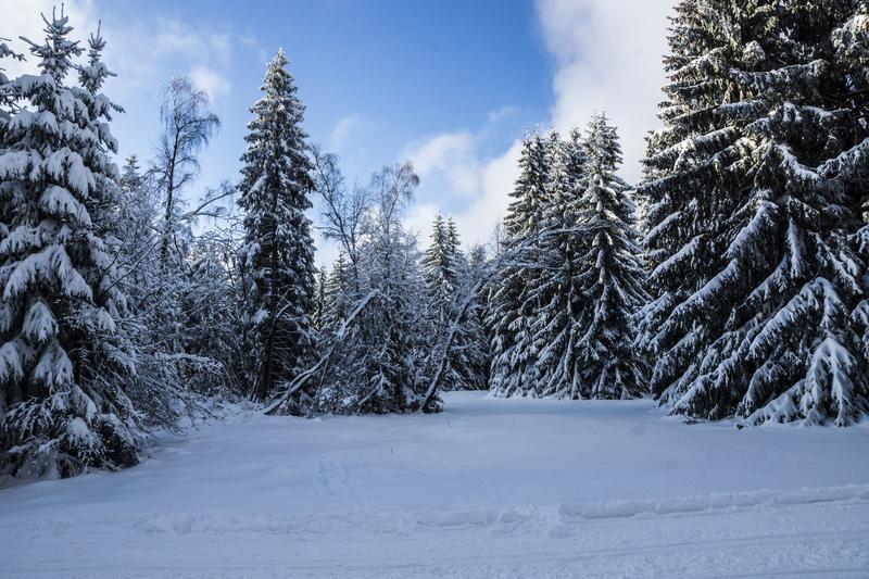 Deutschland Thueringen Winter 1119284 | FRR12300