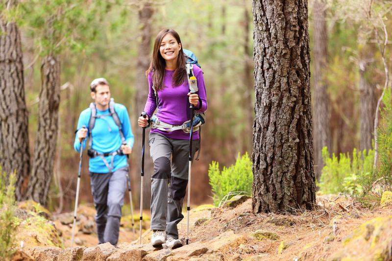 Wanderer im Wald | USE20700