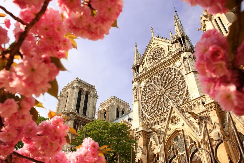 Notre Dame | PAR11500