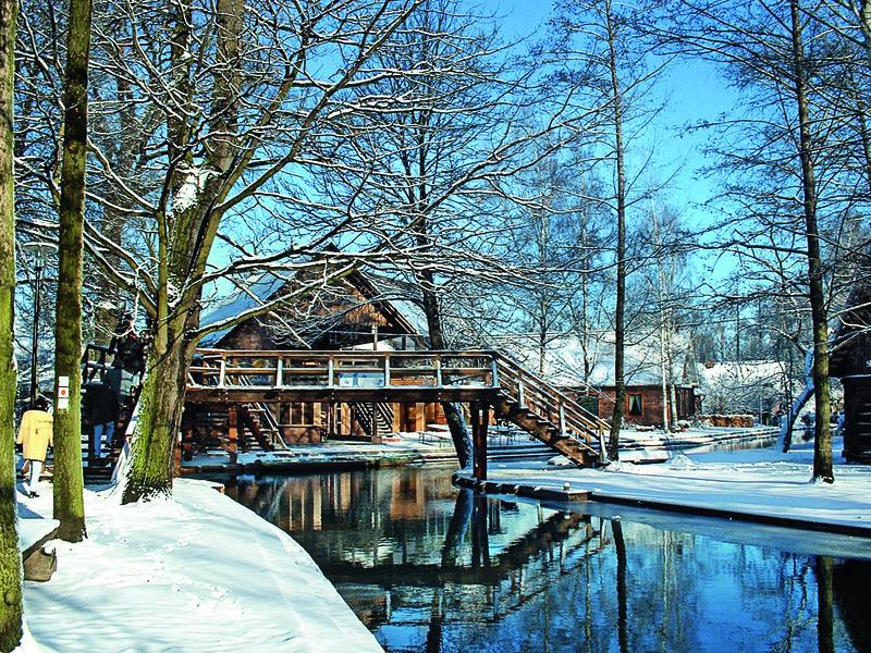 Deutschland Spreewald Winter Lehde Hafen Brücke | COB15400