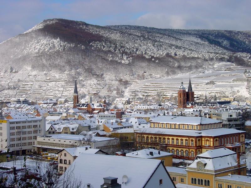 Neustadt Winter Panorama | NET12500