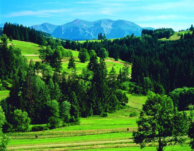 Hohe Tatra | POL11100