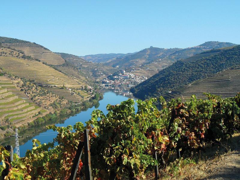 Douro | DOU11800